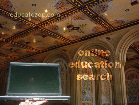 Using my laptop to find online education info while sitting under Bethesda Terrace.